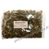 Hamamelis, feuille