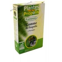 Gomme de propolis BIO Phytofrance