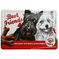 Plaque métal Best Friends carte postale rétro vintage collection