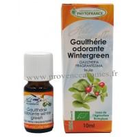 GAULTHÉRIE WINTERGREEN Huile Essentielle BIO Phytofrance