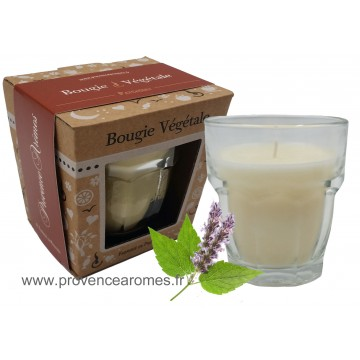 Bougie PATCHOULI Provence Arômes