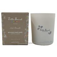 Bougie parfumée INDE ÉTERNELLE Little Marcel