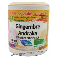 GINGEMBRE BIO 60 gélules végétales Phytofrance Euro Santé Diffusion