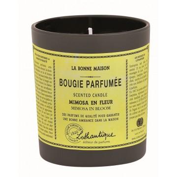 Bougie Parfumée MIMOSA EN FLEUR de Lothantique