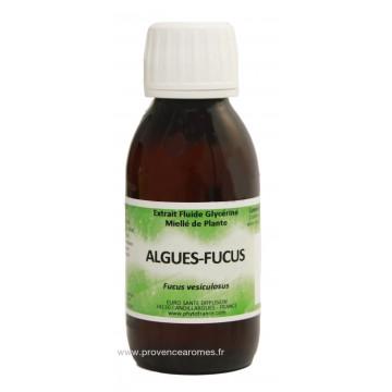 ALGUES FUCUS Extrait fluide Glycériné miellé Phytofrance Euro Santé Diffusion