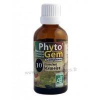 N°10 Stimulant mémoire Phyto'gem BIO complexe Phytofrance Euro Santé Diffusion