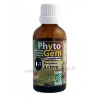 N°14 Souplesse active Phyto'gem BIO complexe Phytofrance Euro Santé Diffusion