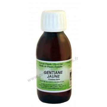 GENTIANE JAUNE BIO Extrait fluide Glycériné miellé Phytofrance Euro Santé Diffusion