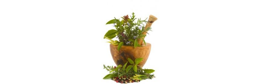 Herbes de Provence, aromates, épices, tisanes, thés