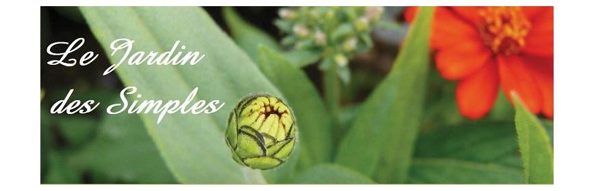 """"""" Le Jardin des Simples """" Provence et Nature"""