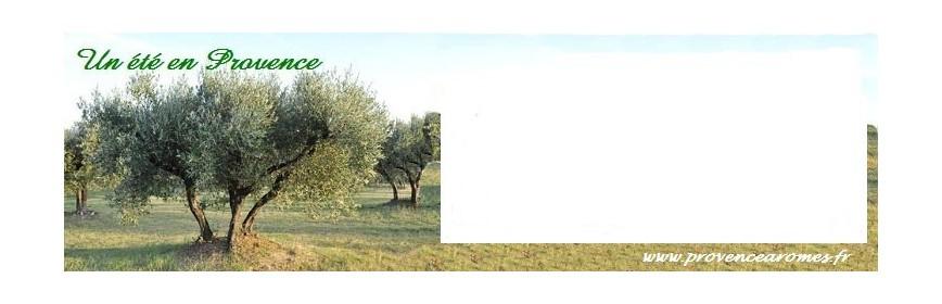 Parfum d'ambiance Un été en Provence