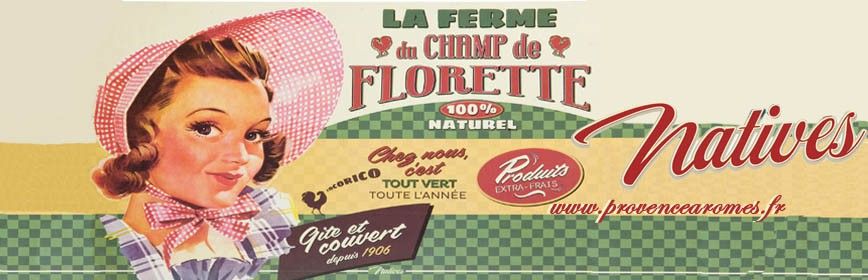 CHAMP DE FLORETTE Natives déco rétro vintage