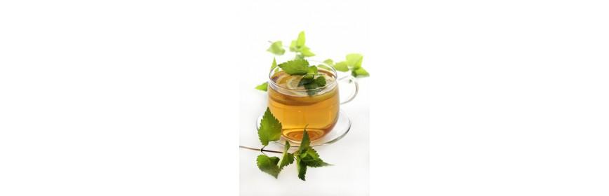 TISANES PLANTES Boissons aromatiques