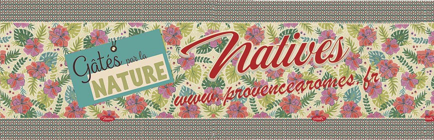 GÂTÉS PAR LA NATURE Natives déco rétro vintage