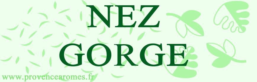 NEZ - GORGE