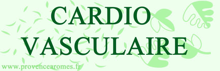 CARDIO - VASCULAIRE