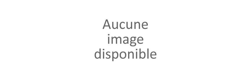 DIFFUSEURS D'HUILES ESSENTIELLES